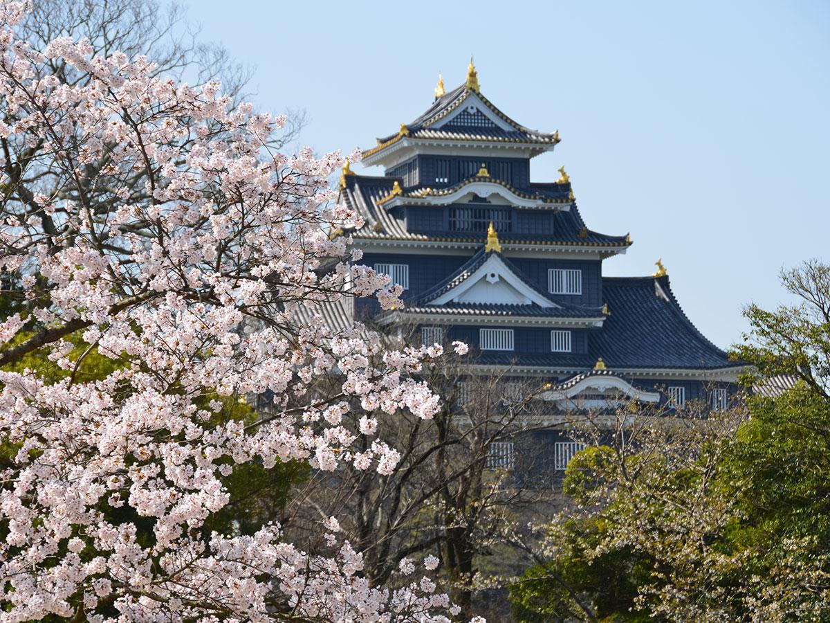 Okayama Korakuen and Okayama Castle
