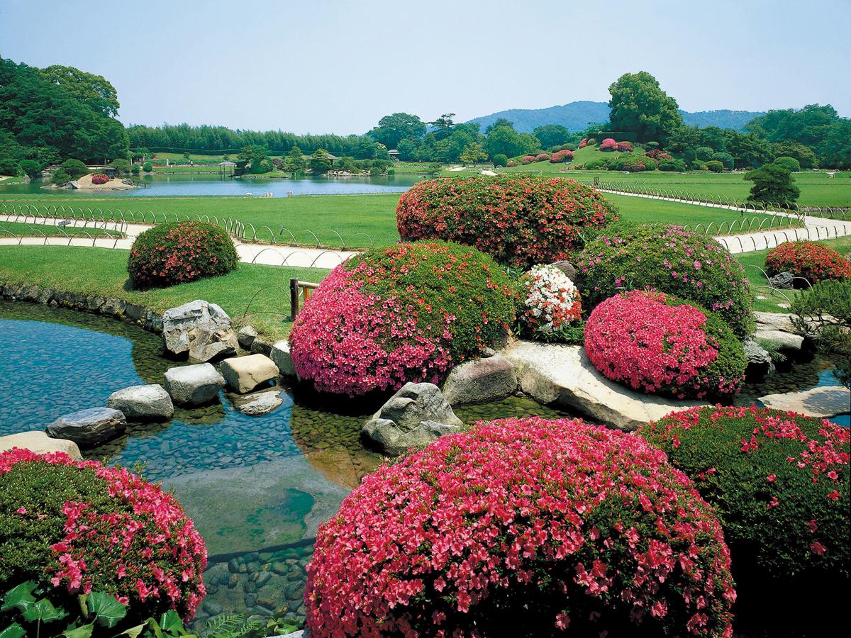 Jardin korakuen d 39 okayama et ch teau d 39 okayama chugoku for Jardines okayama