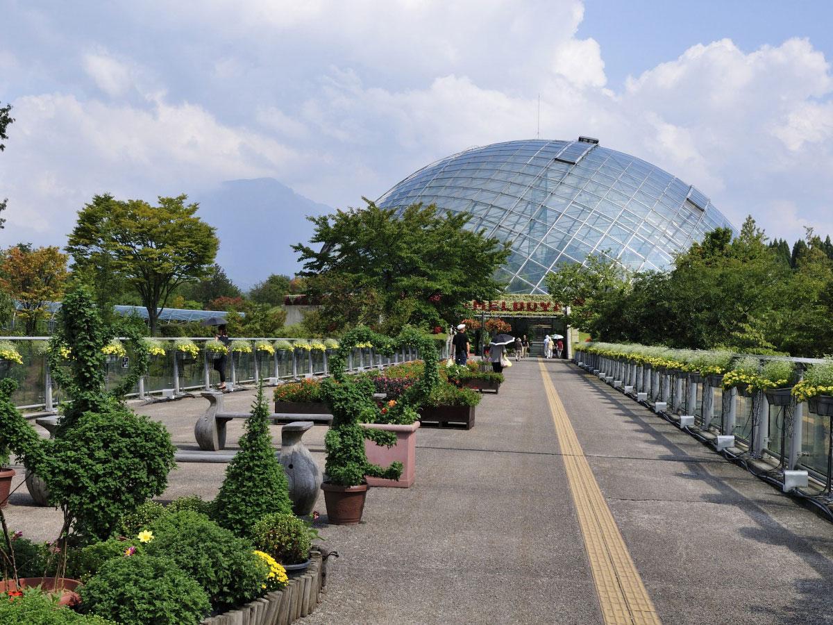 Tottori hanakairo-Flower Park_2