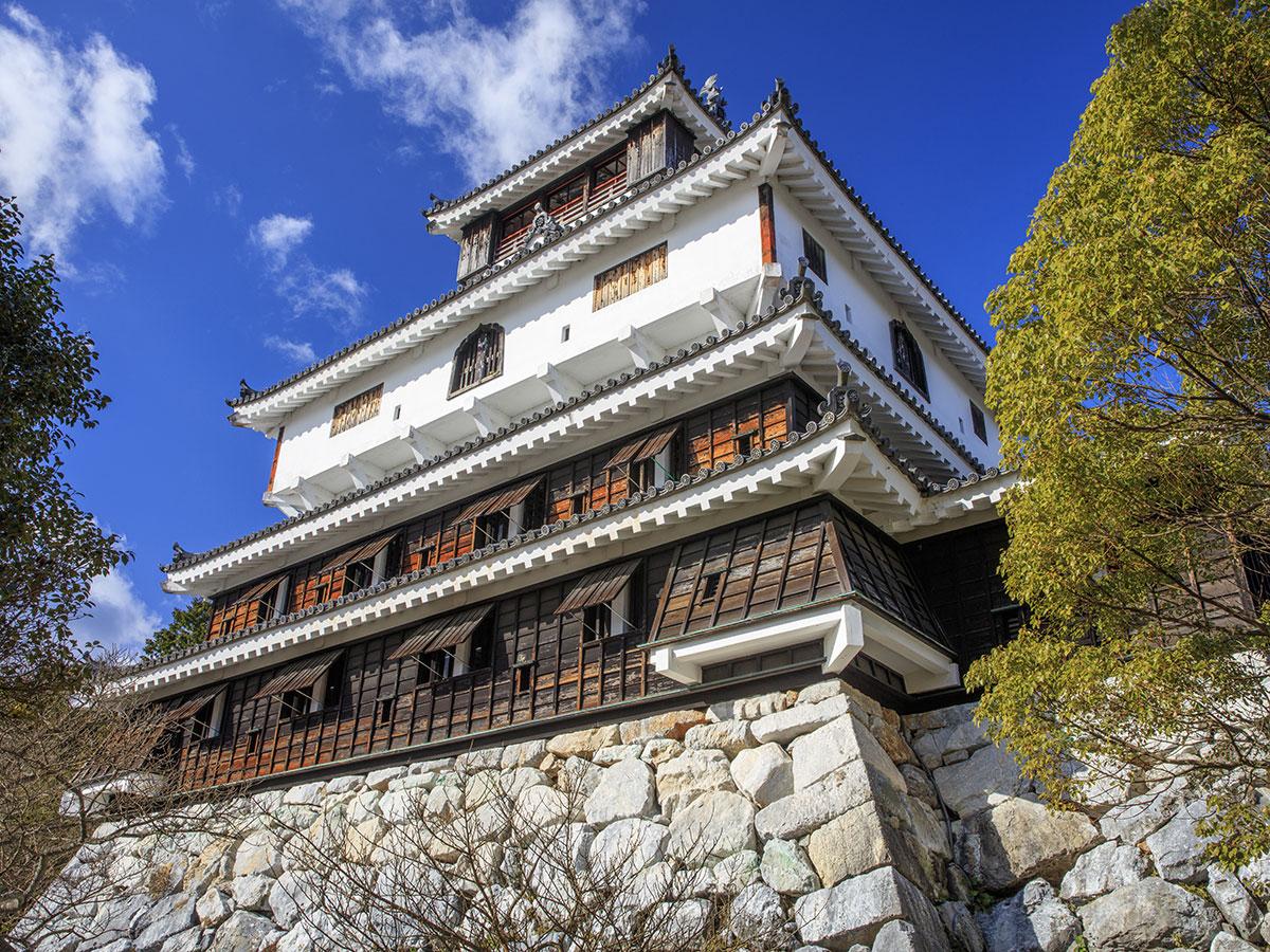 Castello di Iwakuni_4