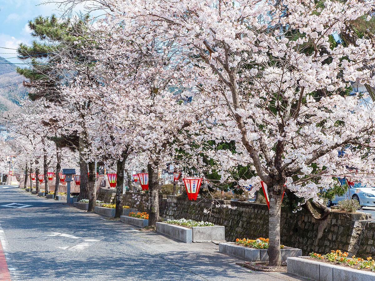 Historischer Bezirk Koyagawa Bikan_3