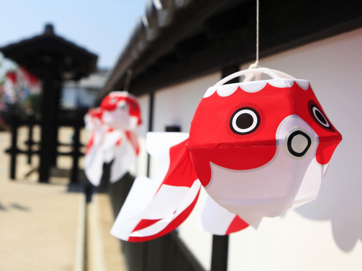 Yanai Nishigura e lanterne dei pesci rossi_2