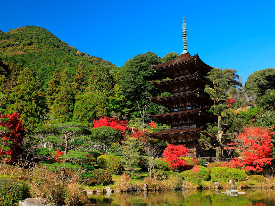 National Treasure Ruriko-ji Five Storey Pagoda_3