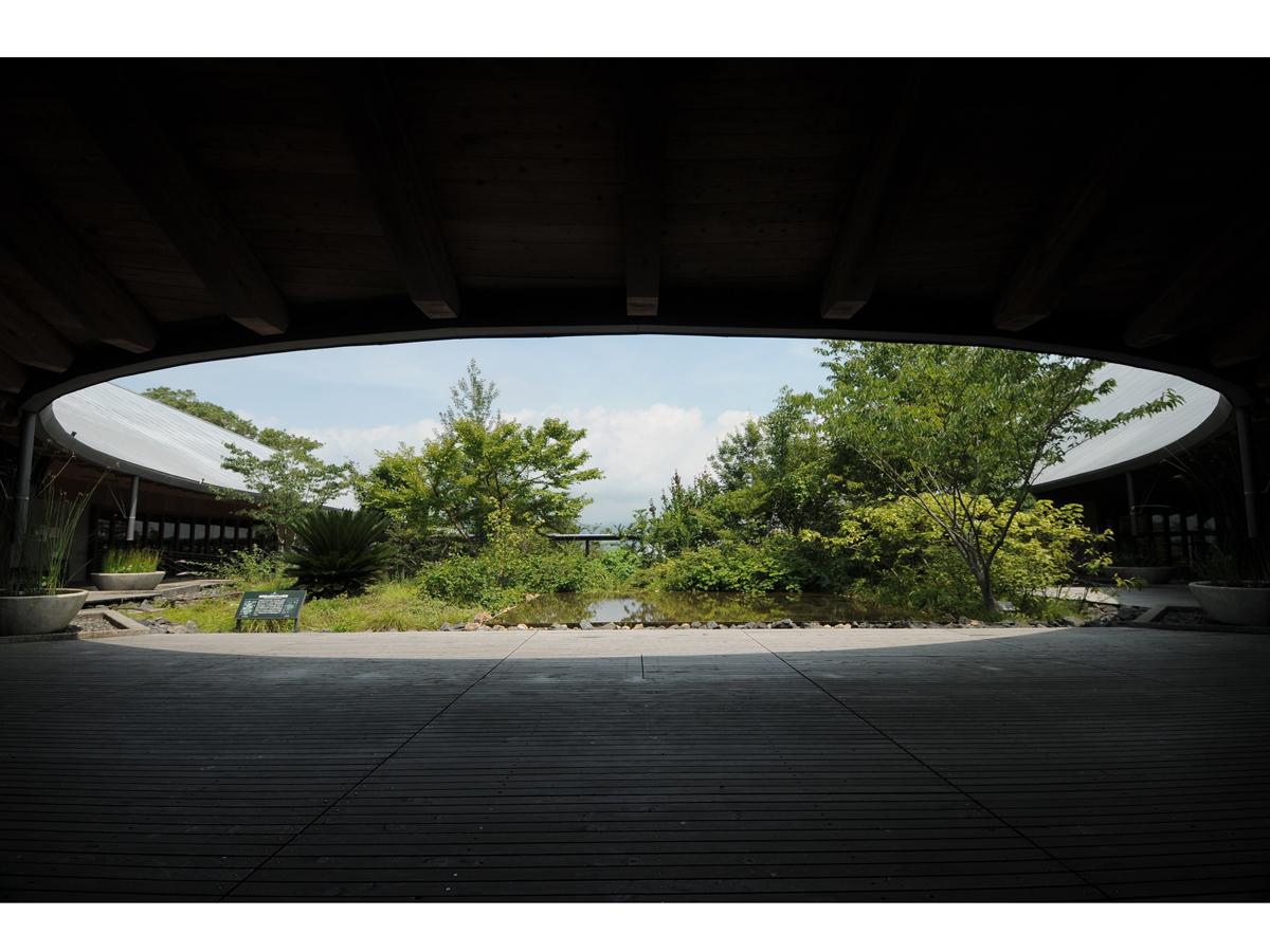 Kochi Prefectural Makino Botanical Garden_3