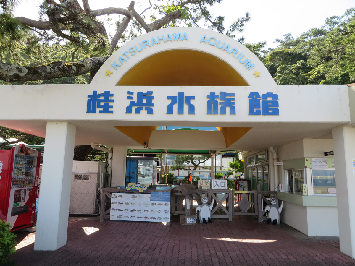 Katsurahama Aquarium_1