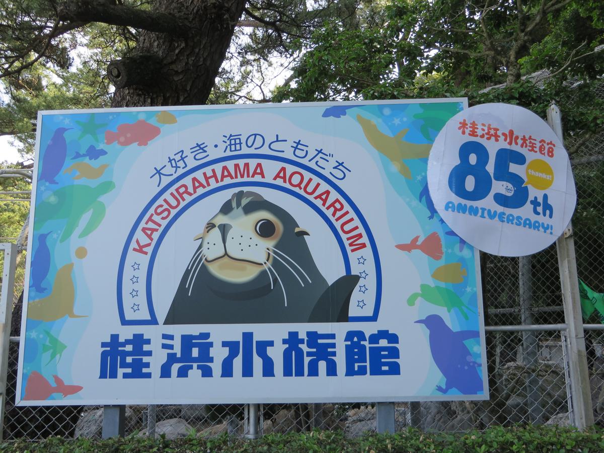Katsurahama Aquarium_3