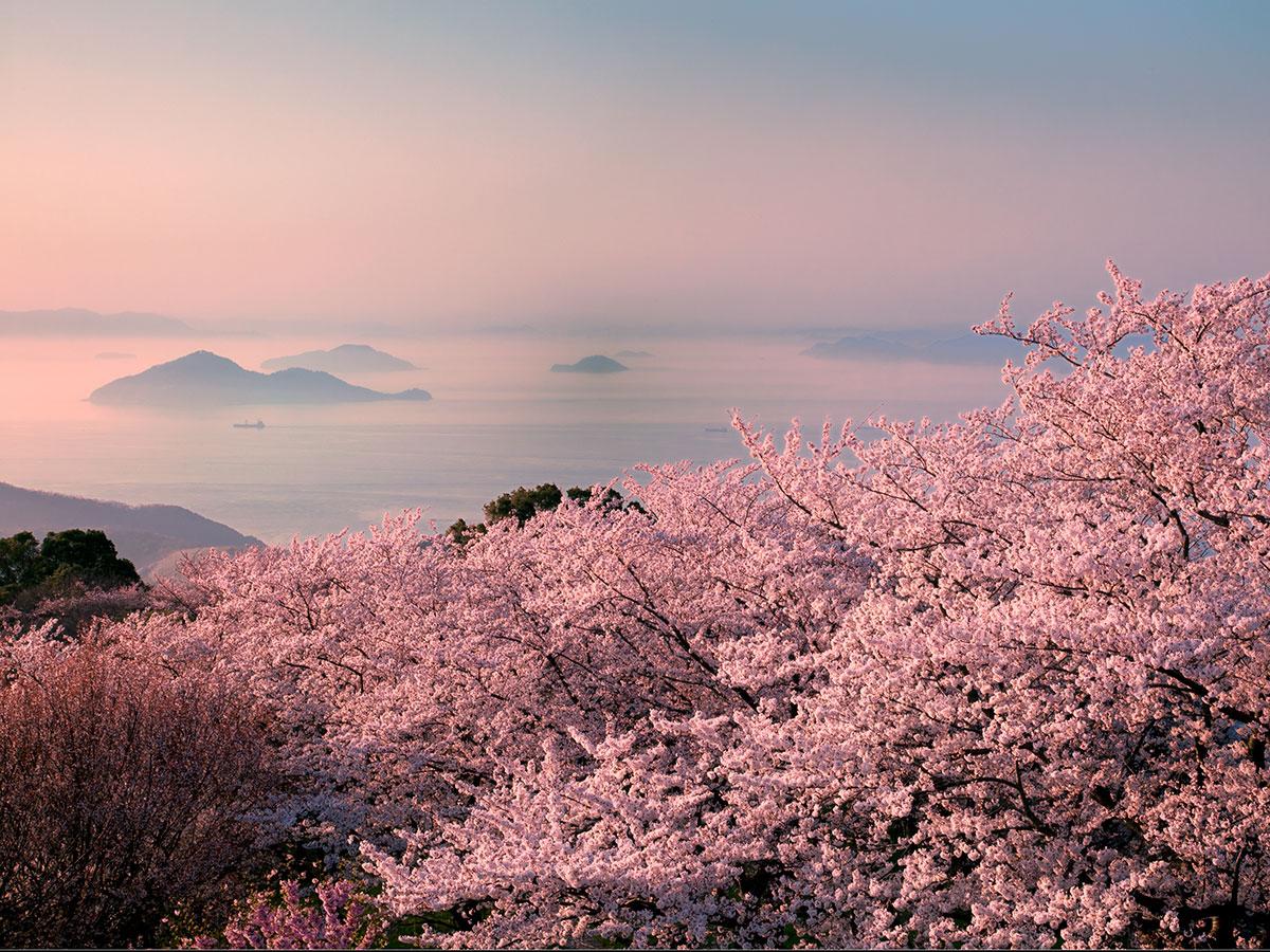 Mt. Shiude_1