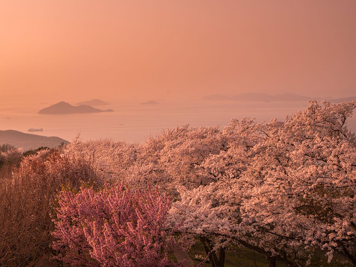 Mt. Shiude_3