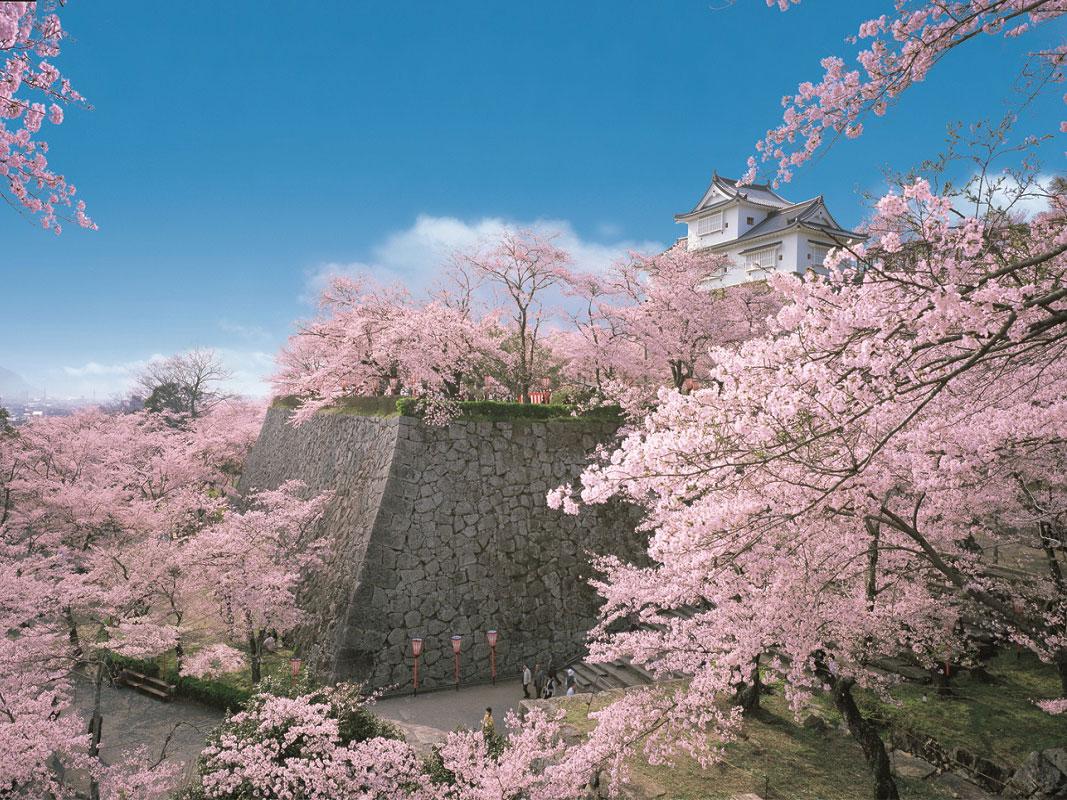 Tsuyama Castle (Kakuzan Park)_1