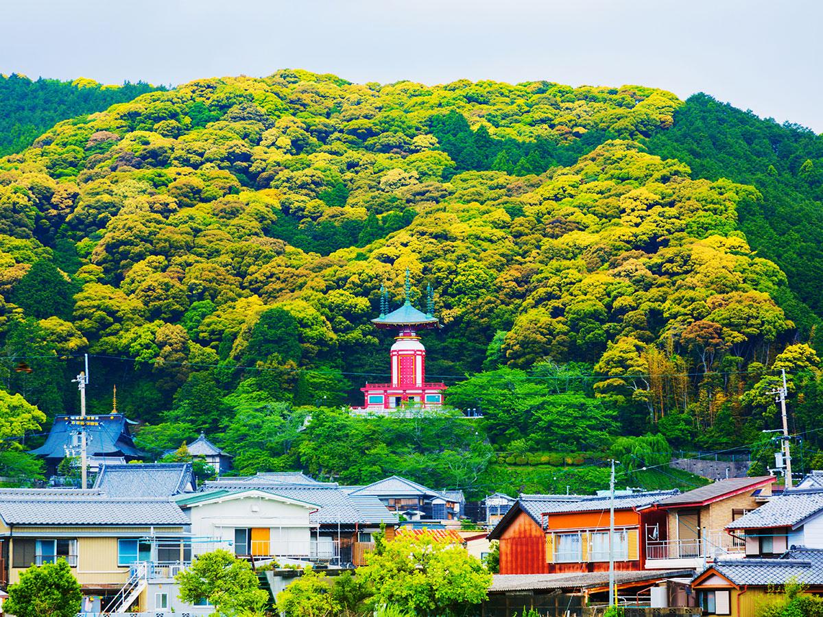 Yakuo-ji Temple_3