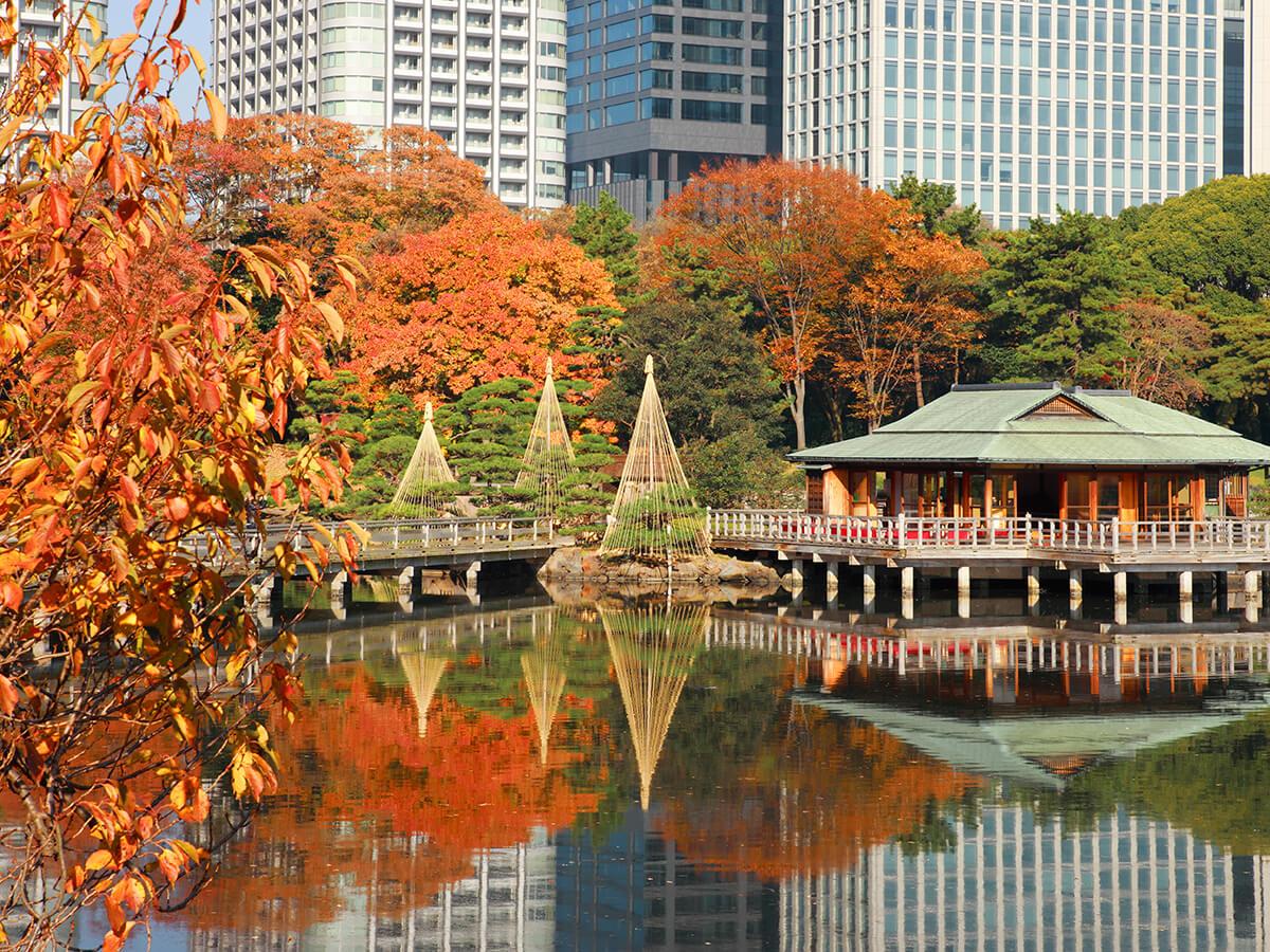 Hama-rikyu Gardens_1