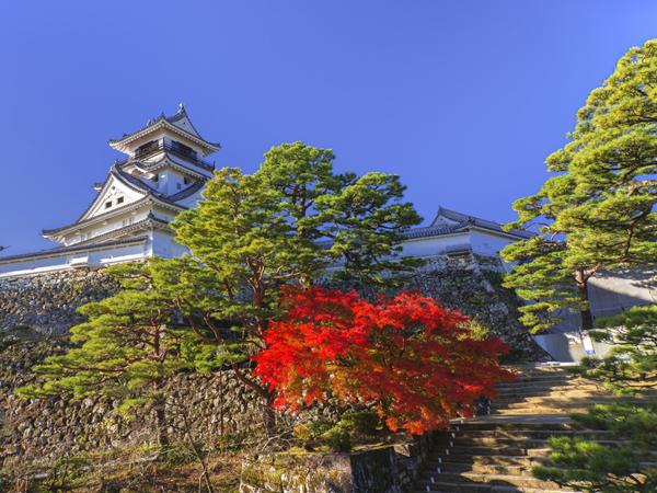 Kochi Castle_3