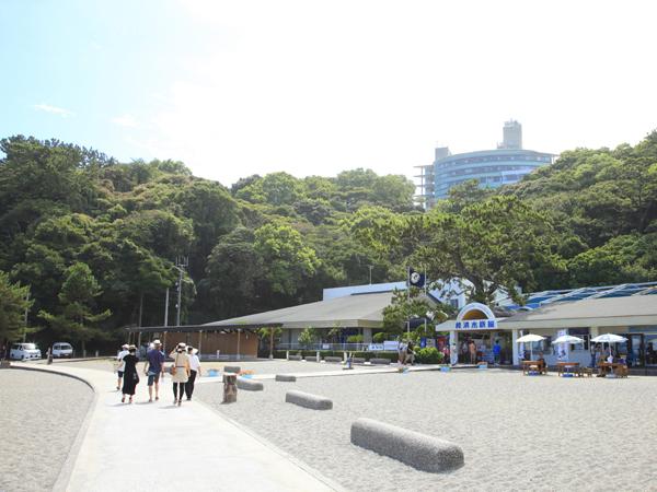 Katsurahama Aquarium_4