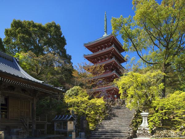 Chikurin-ji- Tempel