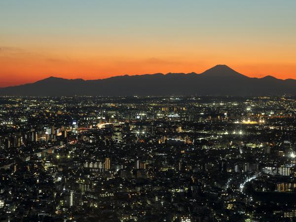 Tokyo Metropolitan Government Building Observation Decks_4