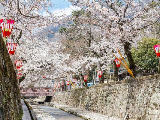 Koyagawa Bikan Historical Quarter_4