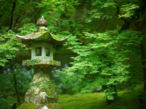 Chikurin-ji Temple_3