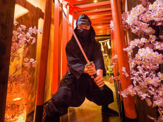 Ninja experience_4