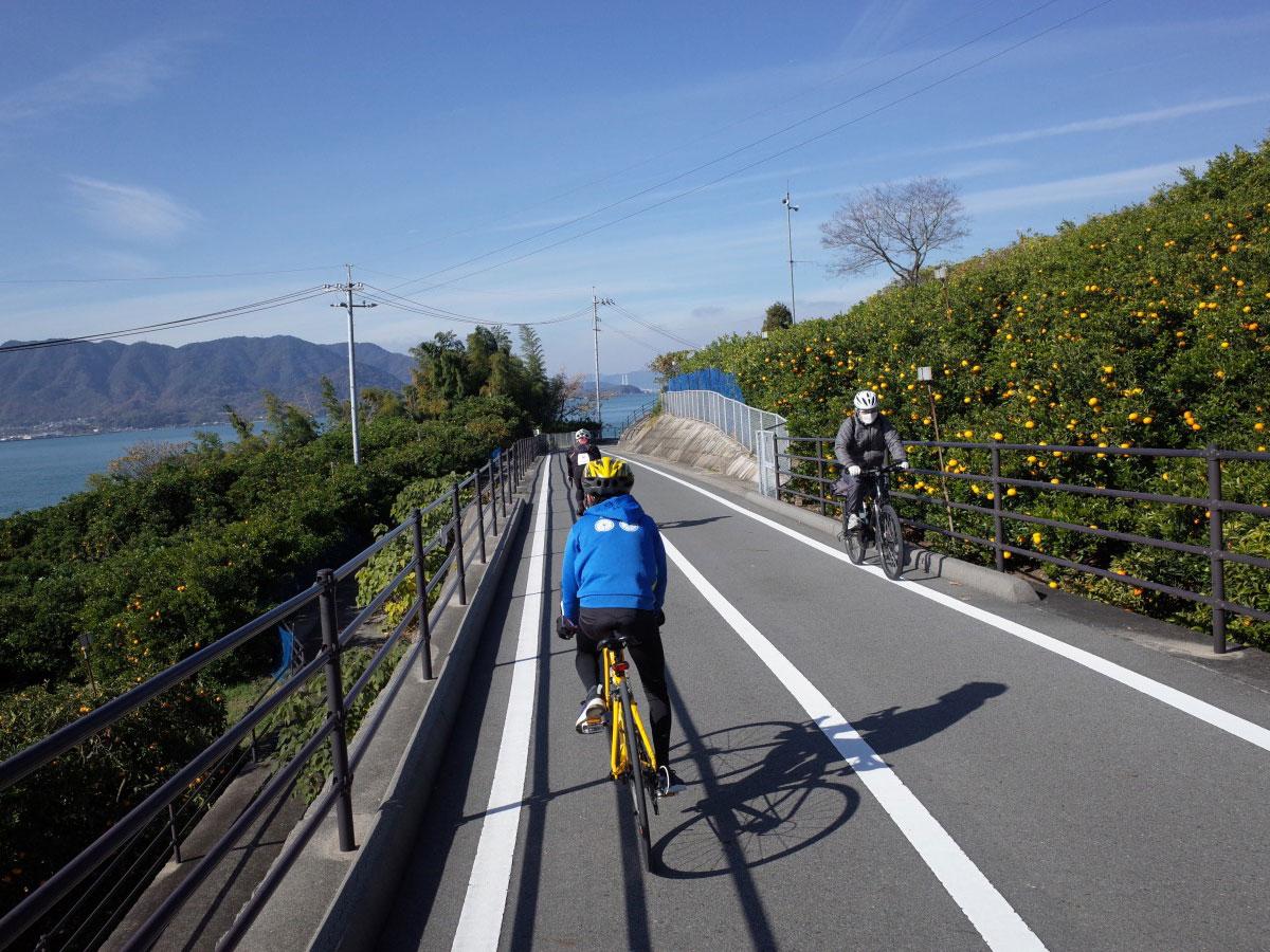 Shimanami Kaido Cycling_2
