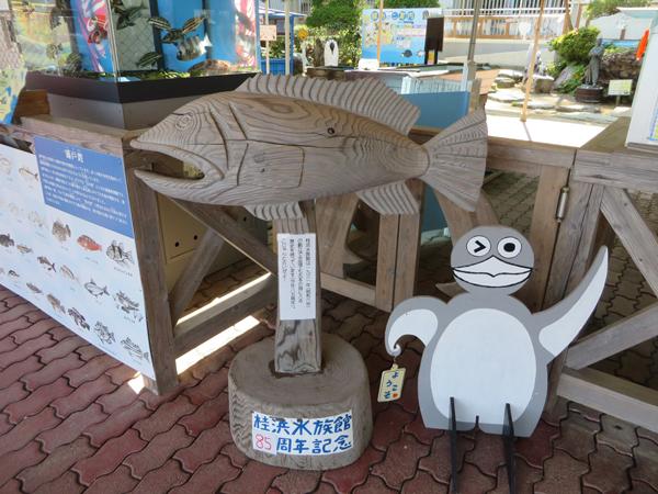 Katsurahama Aquarium_2