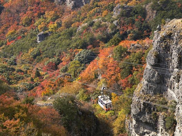 Shodoshima (Kankakei Gorge, Twenty-four Eyes Movie Village, Olive Park)_3