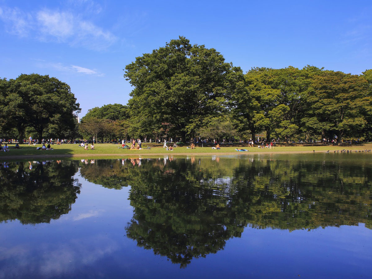Yoyogi Park_2