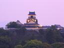Kochi Castle_4