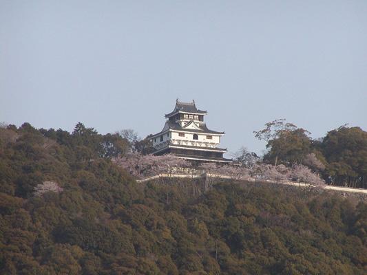 Iwakuni Castle_2