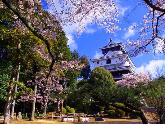 Castello di Iwakuni_3