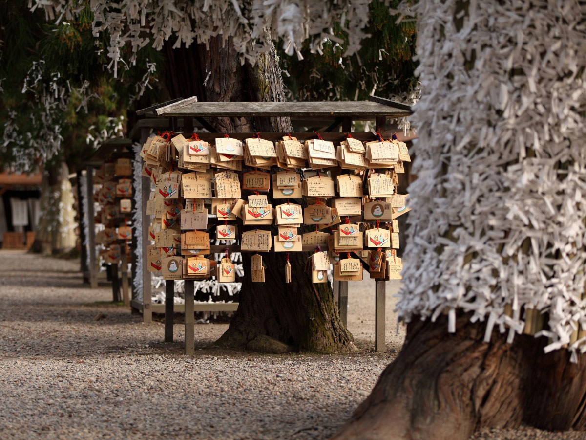 Izumo Taisha Grand Shrine_4
