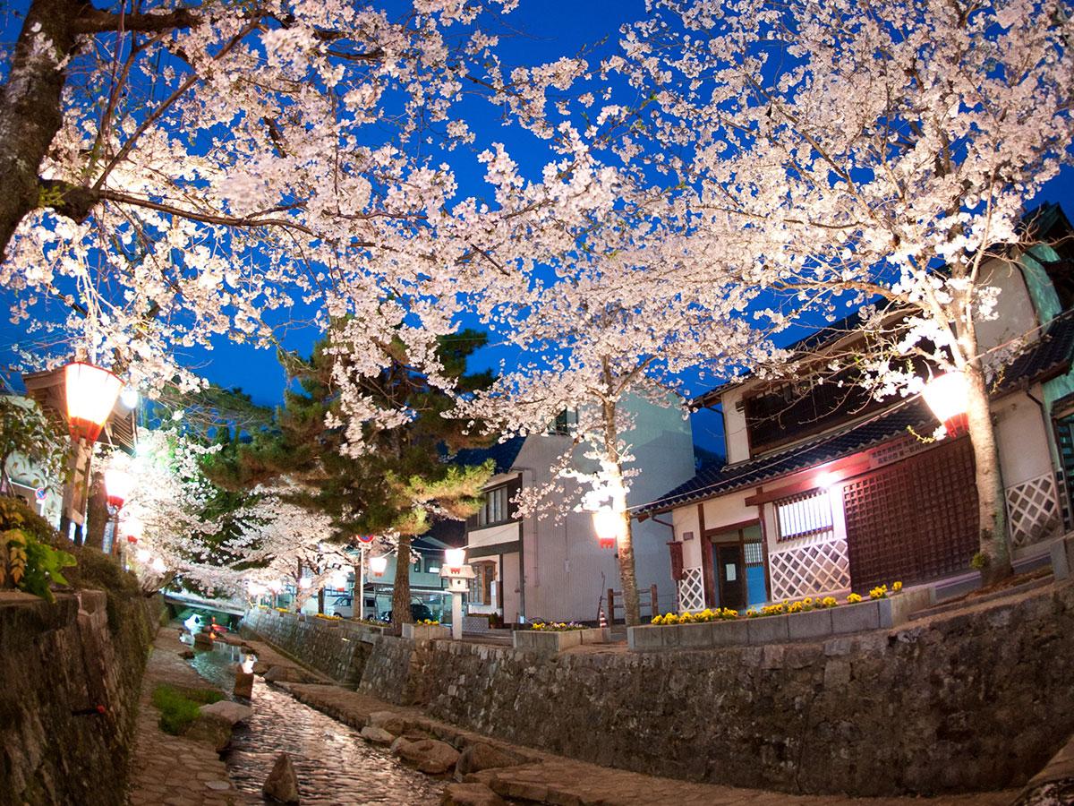 Historischer Bezirk Koyagawa Bikan_1
