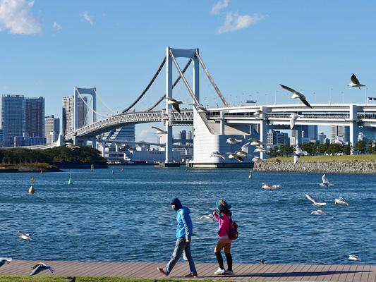 Odaiba Marine Park_1