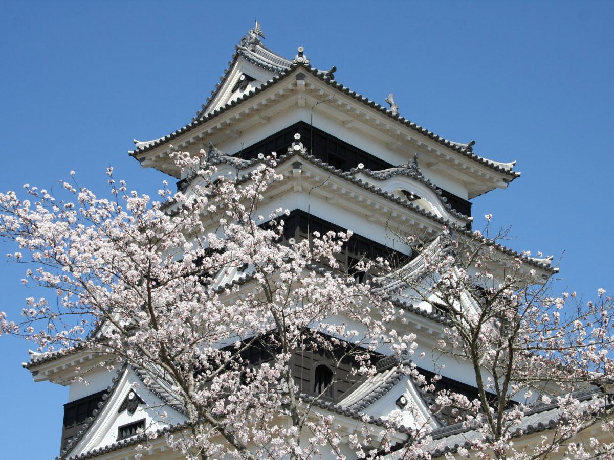 Ozu Castle_3