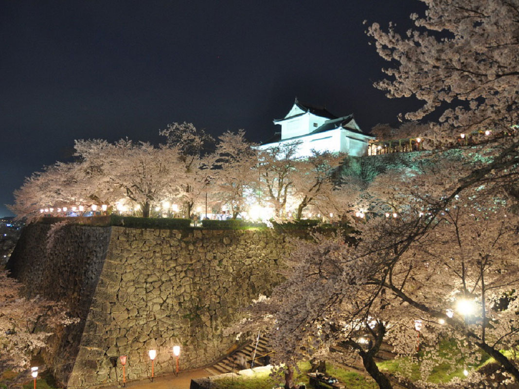 Tsuyama Castle (Kakuzan Park)_2