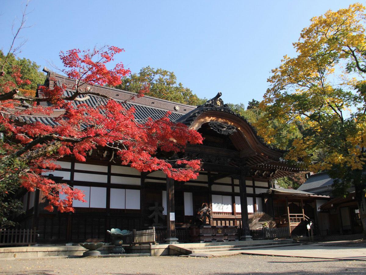 Jindai-ji Temple_3