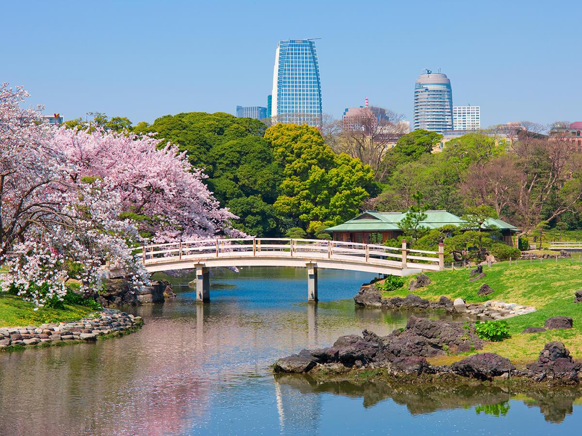 Hama-rikyu Gardens_2